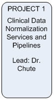 Area 4 Project 1: Clinical Data Normalization Services and Pipelines; Lead-Dr. Chute
